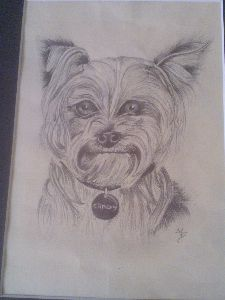 Candy drawing of terrier