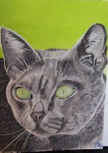 Grey Cat in Watercolour