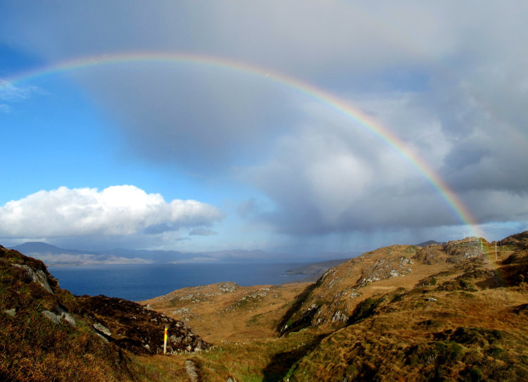 34. Rainbow, Sheep's Head