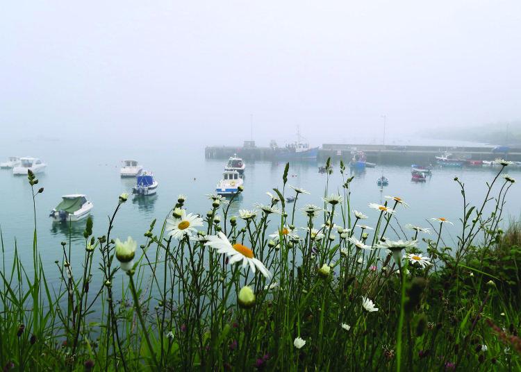 Misty moisty morning, Ahakista