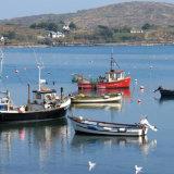 21. Schull Harbour, West Cork (2)
