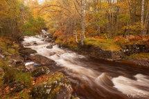 Glen Affric Stream