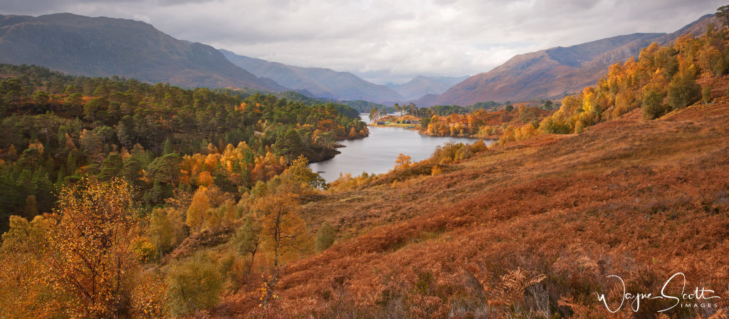 Glen Affric View point