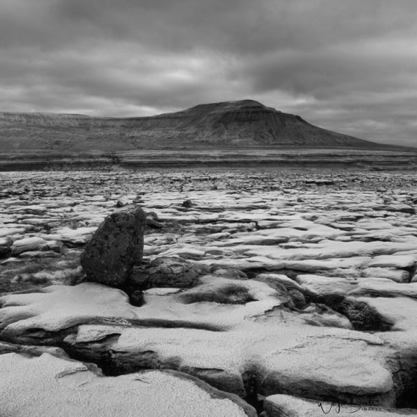 Ingleborough from a section of limestone pavement