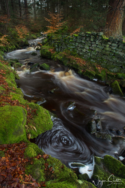 Washburn Stream