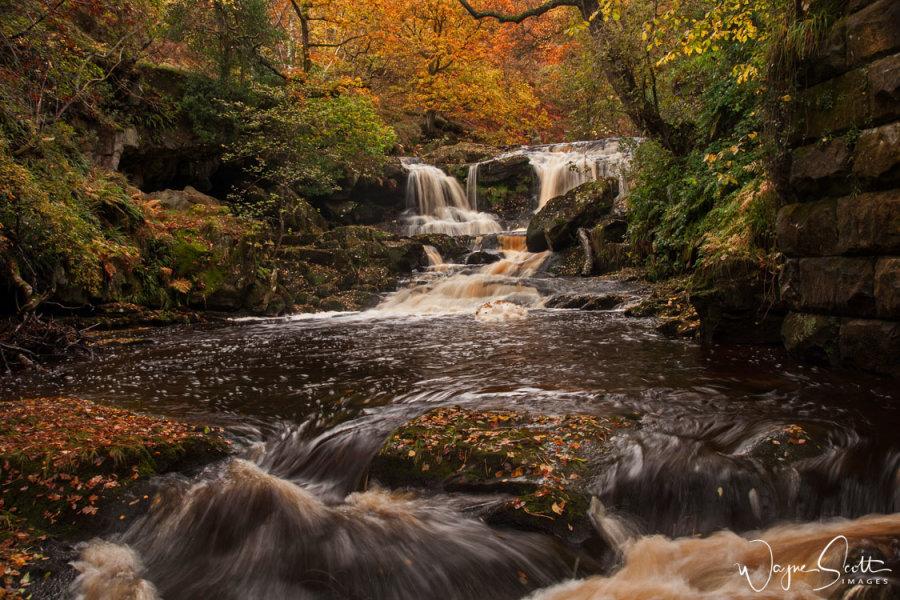 Thomason Foss Upper Falls