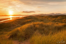 The Sand Dunes of Harlech