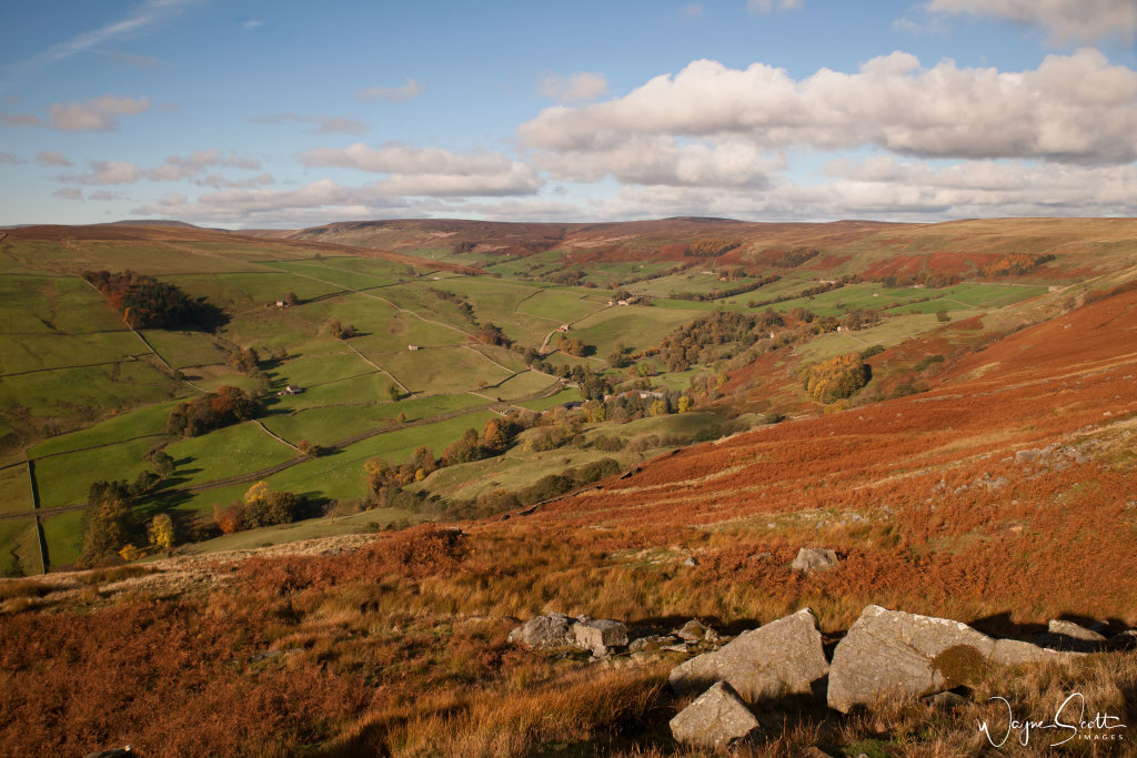 Upper Nidderdale in Autumn