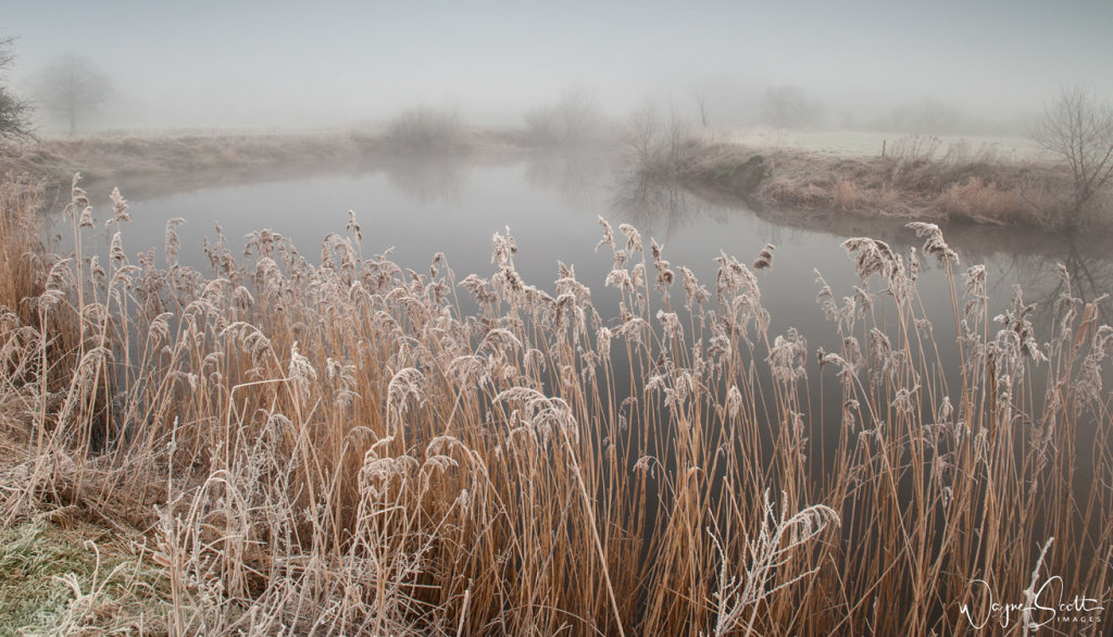Frost And Mist on the river Wharfe