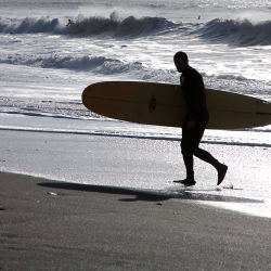seaton surfer