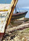 Camaret Boats