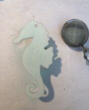 Seahorse 2