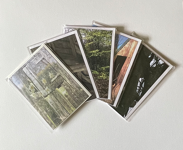 5 assorted greeting cards arranged in an arc