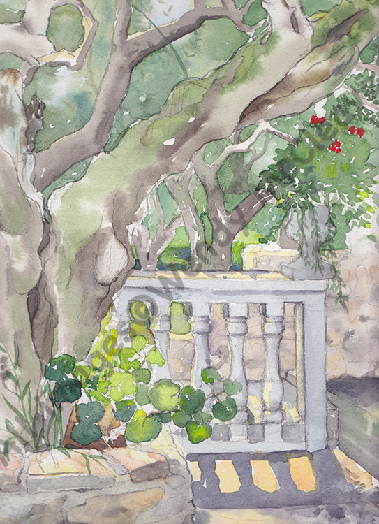 Pencil and watercolour sketch in the garden of a villa on Zakynthos
