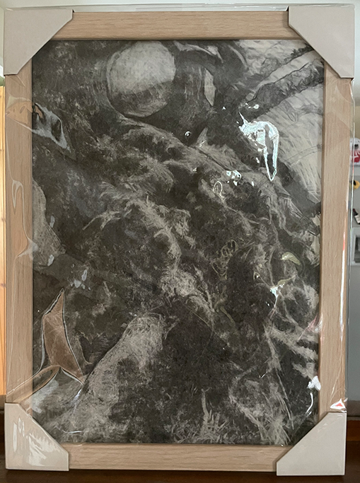 Framed print of original charcoal drawing of an ancient will growing at an angle in a field