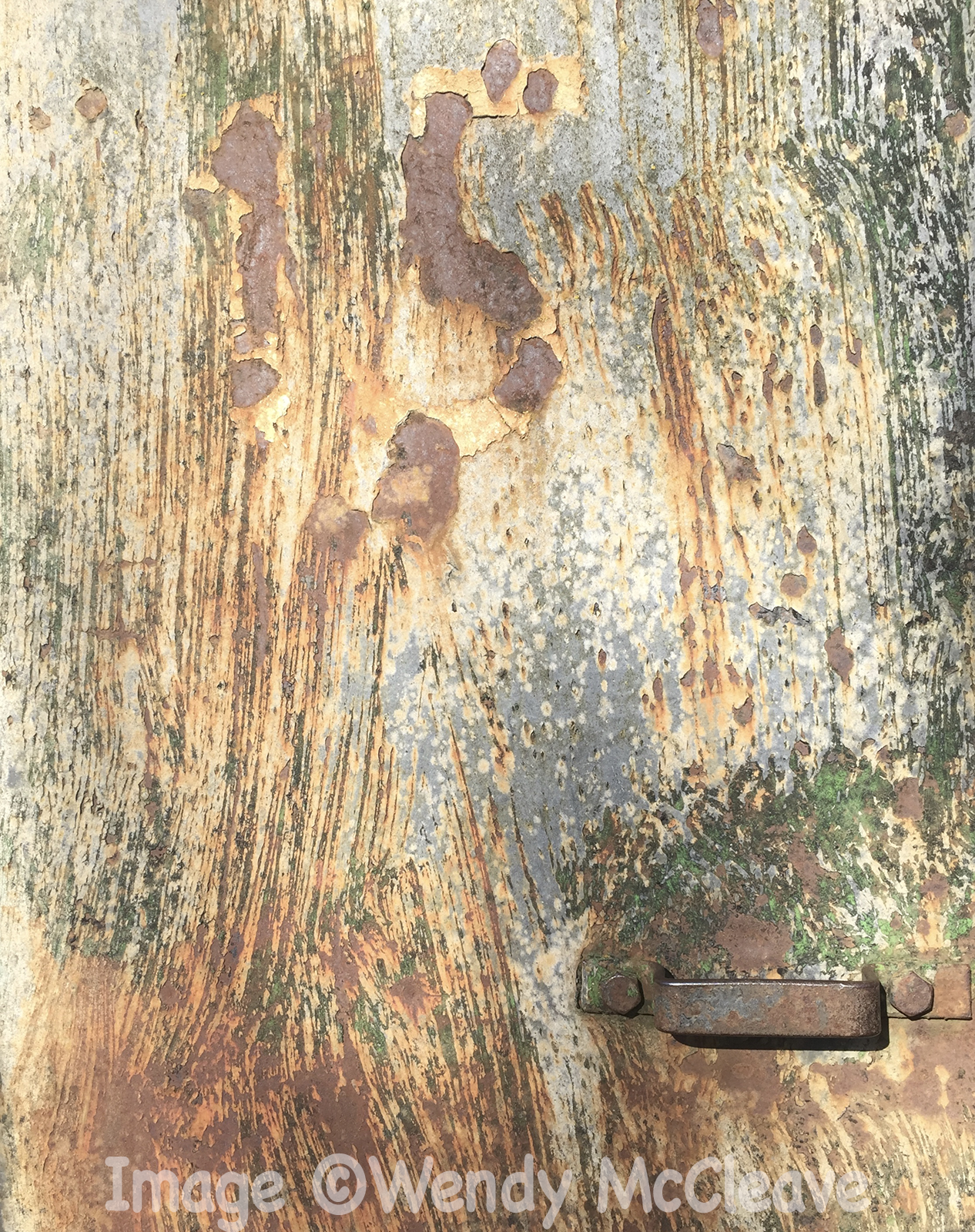 Texture of old Romney Hut at Rotherwas Estate