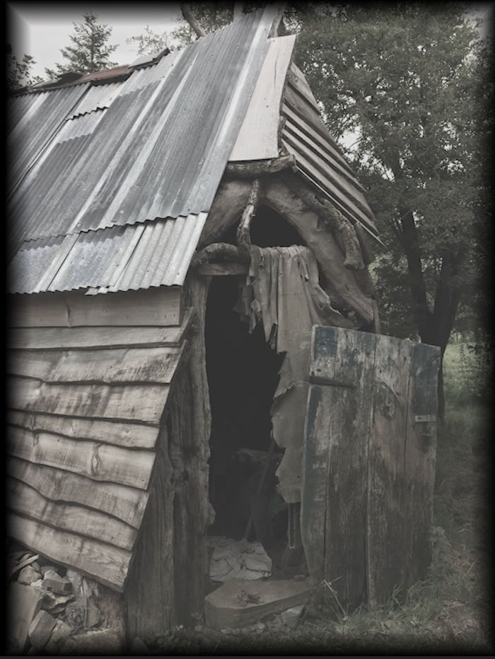 an old woodshed with a tin roof
