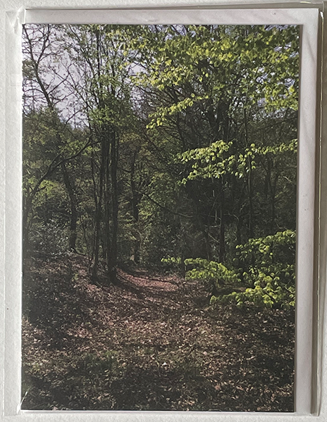 Front of greeting card showing woodland scene