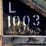 L1003