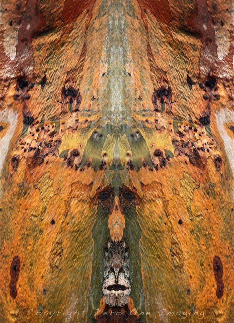 Tree of many faces