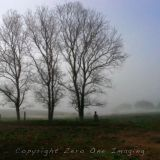 triple treet
