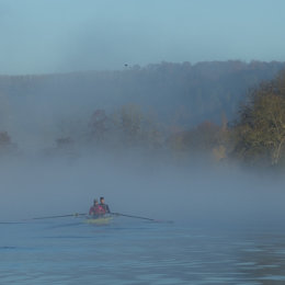 Early risers at Temple Island, Henley-on-Thames