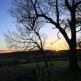 Stonor Valley Sunset