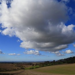 View from Ewelme Park