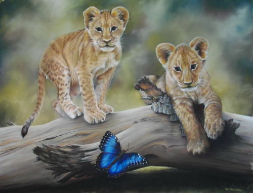 Lion Cubs at Play £400