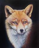 The Fox £400 pastel