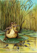 Frog, Flutewise cover design, Prints available £20