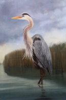 The Heron £300