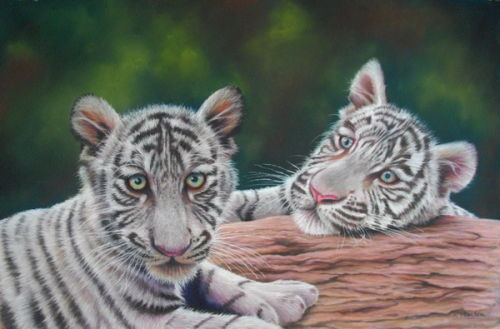 White Tiger Cubs Pastel £350