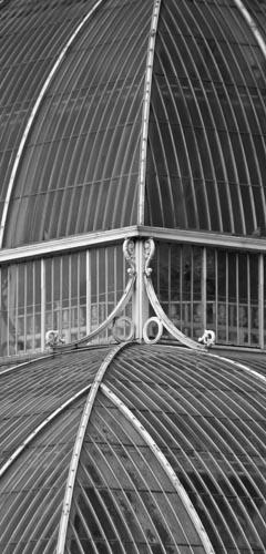 A section of the palm house