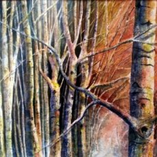Woods at Sleningford (watercolour) SOLD