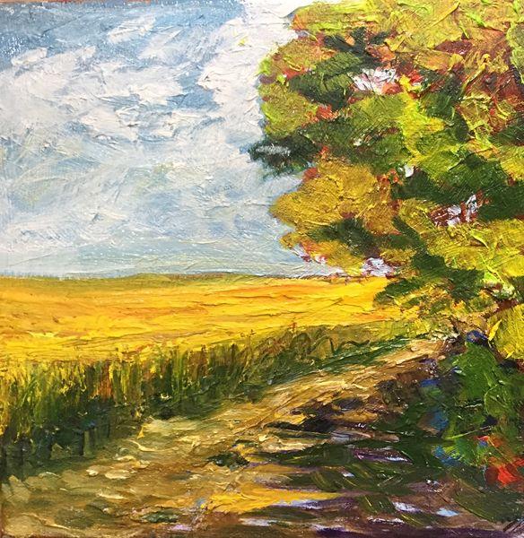 """Golden Field (oils) 8"""" x 8""""  £90"""