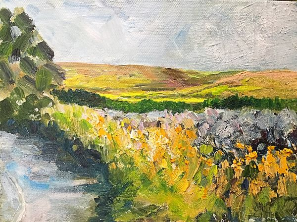 Above Simonstone, Hawes, Wensleydale (oils) 20 x 15 cms £75