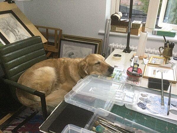 Max in the studio