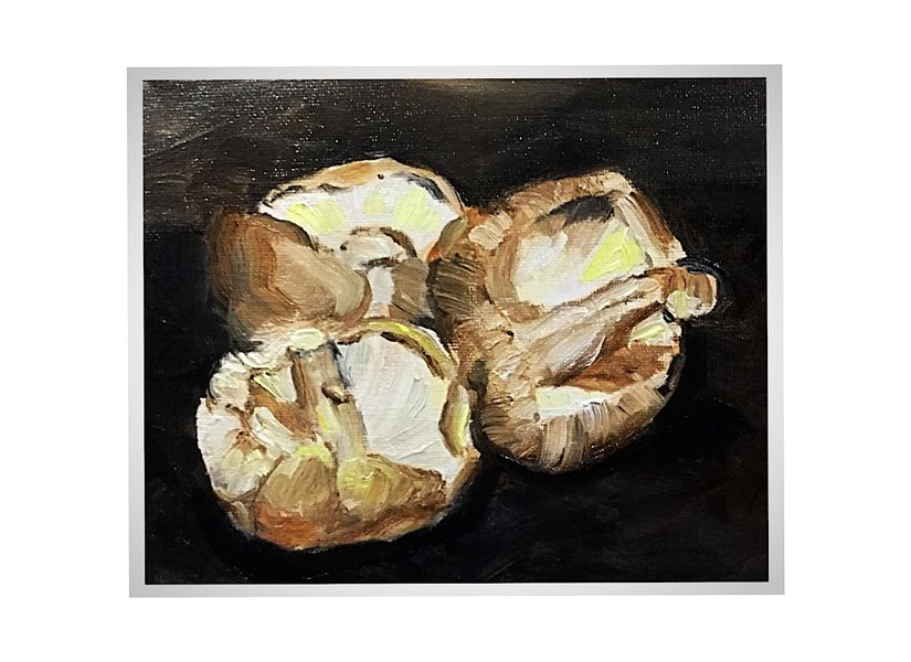 Three Mushrooms (oils) 26 x 20 cms £60