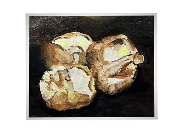 Three Mushrooms (oils) 26 x 20 cms £60
