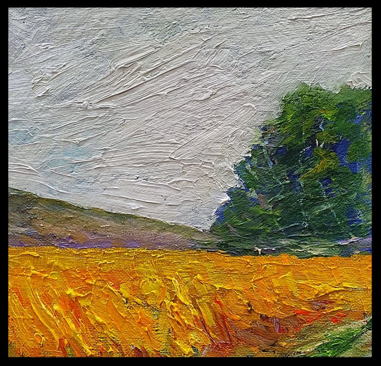 Golden Fields (oils) 20 x 20 cms £60