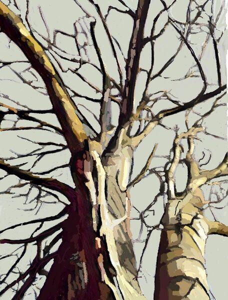 Two Winter Trees (digital)