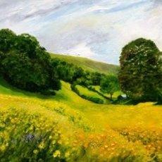 Summer Meadows near Muker, Swaledale (oils) SOLD