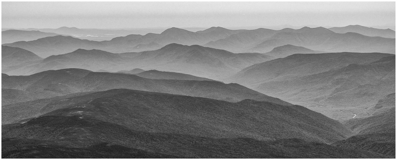 Early Light by Myra Jones