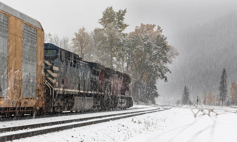 01 Stephen Lee Tracks through the Snow