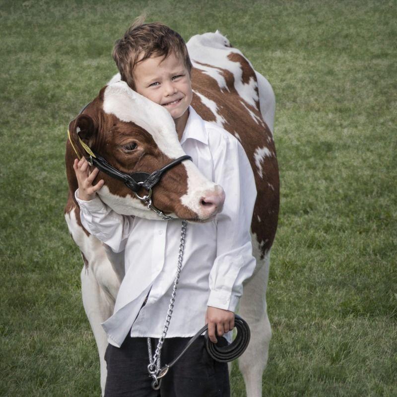 02 Calf Love by Jane Tearle