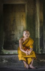 03 Young Monk by Jane Tearle