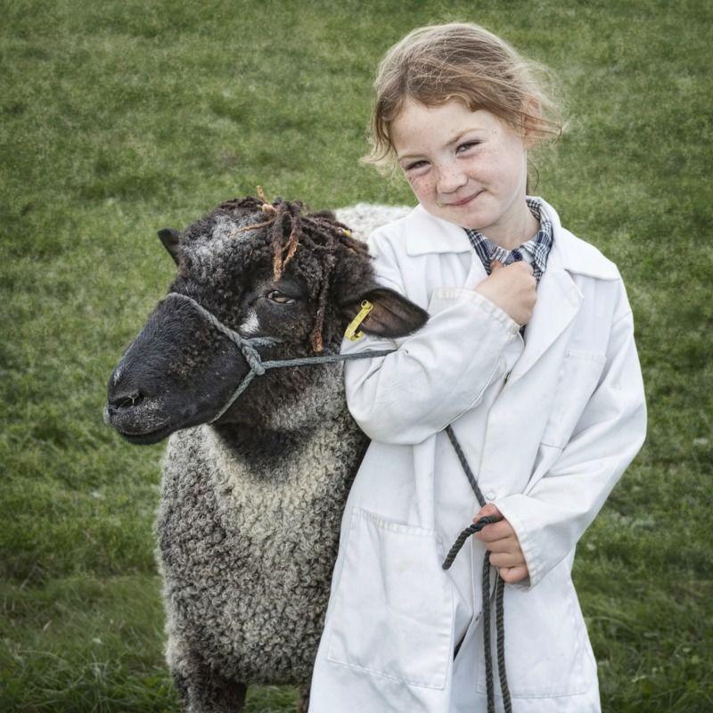 04 Becky's Sheep by Helen Jones