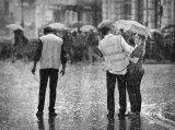 09 Rain Steward