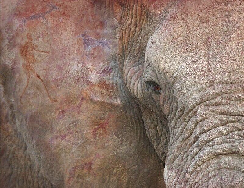 13 Ancient memories by Lisa Bukalders